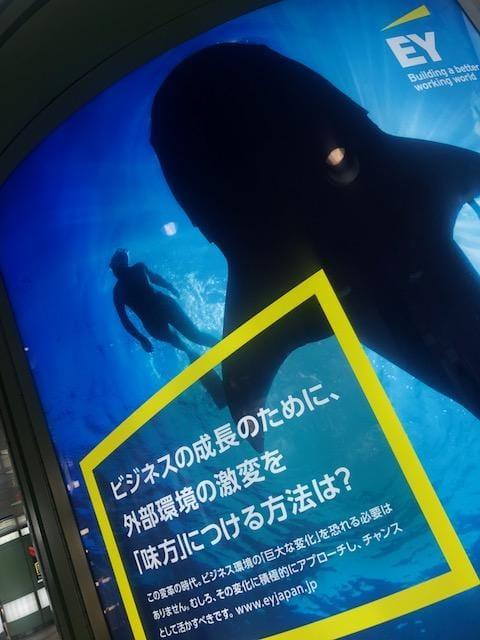 「Re: クジラと人が」03/24(日) 16:50 | 山室の写メ・風俗動画