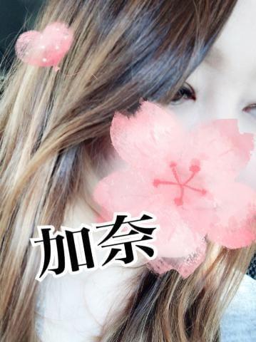 谷村 加奈「スケジュール」04/19(金) 23:04   谷村 加奈の写メ・風俗動画