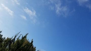 「おはよ⸜(* ॑꒳ ॑* )⸝」04/20(土) 07:26 | えみ【吸い込まれそうな瞳】の写メ・風俗動画