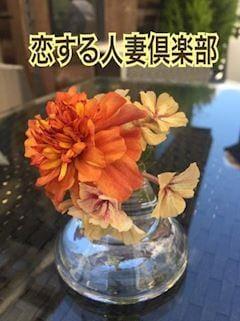 晴美(はるみ)「はるみ」04/24(水) 07:37 | 晴美(はるみ)の写メ・風俗動画