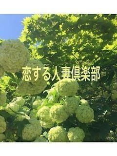 晴美(はるみ)「はるみ」04/25(木) 06:50 | 晴美(はるみ)の写メ・風俗動画