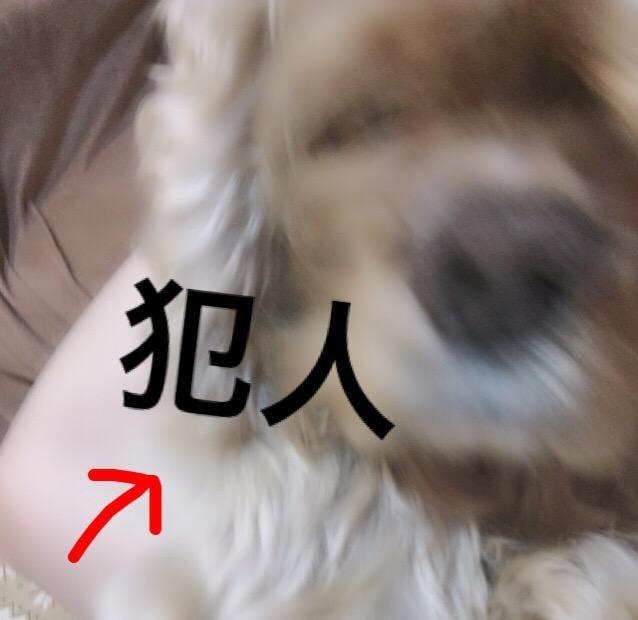 あこ「m(_ _)m」04/25(木) 16:34   あこの写メ・風俗動画