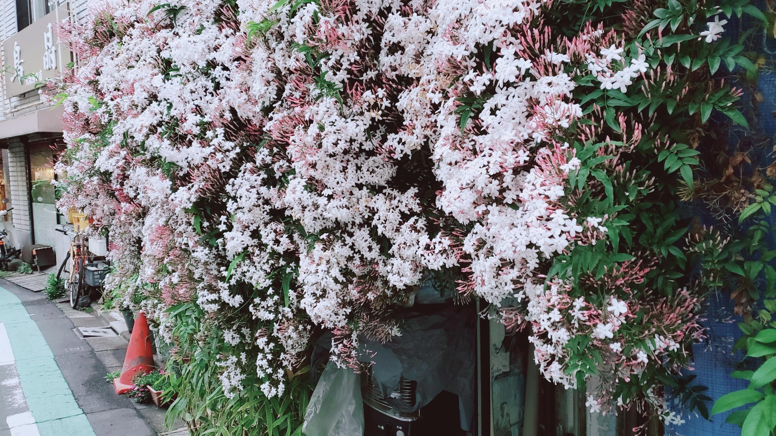 「じっとり…」04/25日(木) 20:18 | いつきの写メ・風俗動画