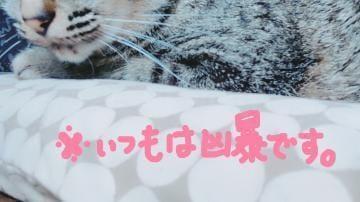 「外面だけはいいんだわ。」04/26(金) 13:28 | りん【巨乳】の写メ・風俗動画