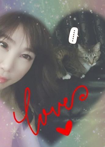 しずか 「【猫動画】『激しいな!』」05/20(月) 18:09 | しずか の写メ・風俗動画