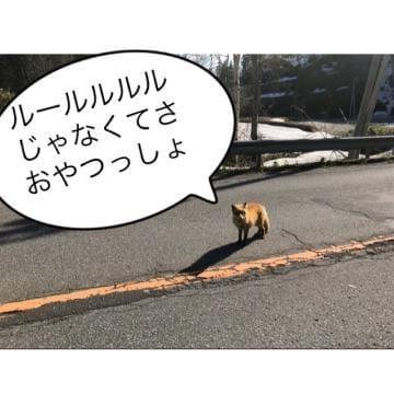 ユマ「北海道あるあるーるるるる♪?」05/20(月) 19:15 | ユマの写メ・風俗動画