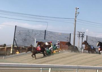 ユマ「ばんえい競馬?」05/20(月) 21:30 | ユマの写メ・風俗動画
