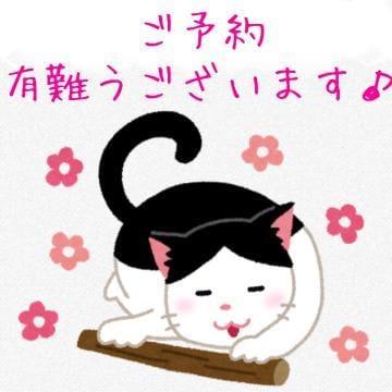 りょうこ「本日の受付終了しております☆★」05/25(土) 21:12 | りょうこの写メ・風俗動画
