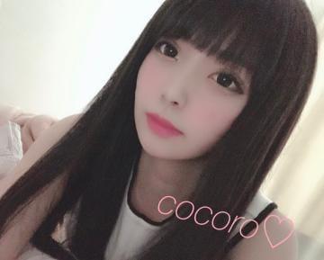 「?」06/03(月) 19:10   こころの写メ・風俗動画