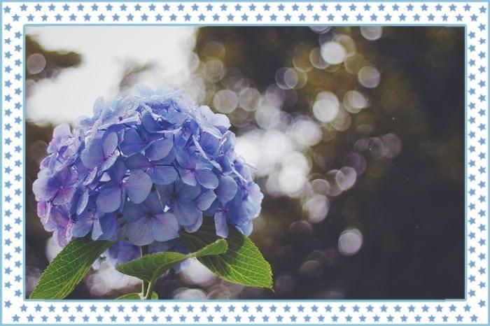 橋本ありさ「(*^ω^*)シュッキン♪」06/15(土) 13:02 | 橋本ありさの写メ・風俗動画
