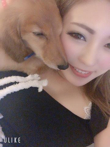 「本日」06/17(月) 04:07 | うた【G】セクシー女優顔負け☆の写メ・風俗動画