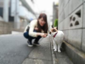 「[お題]from:キャクさん」06/19日(水) 12:30 | りさの写メ・風俗動画