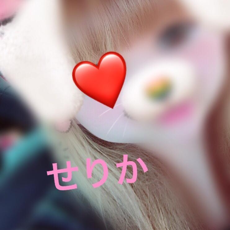 「こんにちわん」06/24日(月) 12:32 | 橋本 せりかの写メ・風俗動画