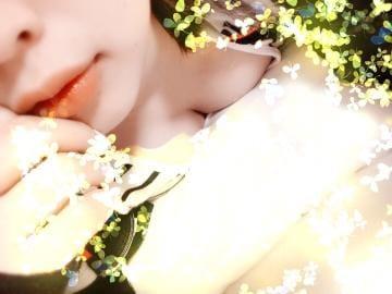 しおん「国際ホテル様♡」06/01(木) 01:14   しおんの写メ・風俗動画