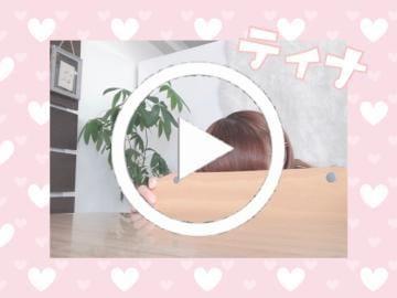 「動くティナ。(ひょっこりはんver)」08/18(日) 14:00 | ティナの写メ・風俗動画