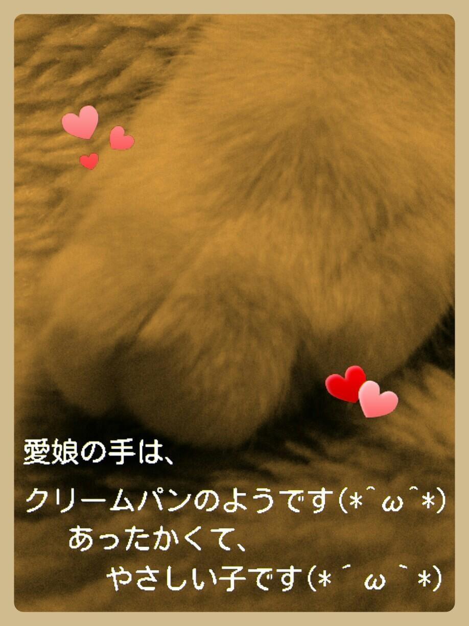 「愛娘(=^ェ^=)(*´ω`*)」09/19日(木) 09:41 | ななの写メ・風俗動画