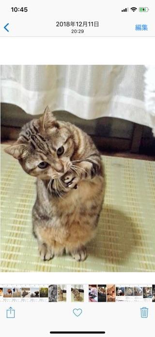 「本日」09/20(金) 10:51 | りのの写メ・風俗動画