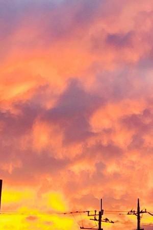 「今日は、夕焼けが 美しすぎて感激でした?」09/23(月) 19:21 | 条組れいあの写メ・風俗動画