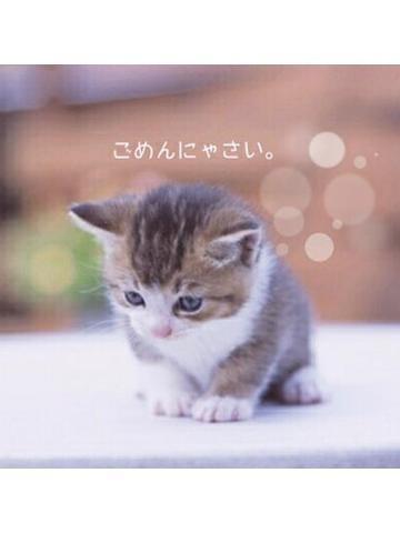 ともみ「こんばんは」10/21(月) 23:02   ともみの写メ・風俗動画