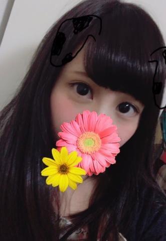 「( *´?`*)」10/27(日) 02:00 | 【S】まみの写メ・風俗動画