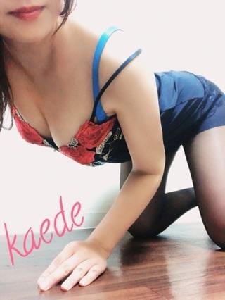 カエデ「ぷるぷる。」12/08(日) 00:50 | カエデの写メ・風俗動画