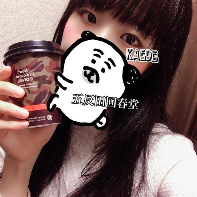 「猫舌」12/11(水) 18:05 | 楓-かえで-の写メ・風俗動画