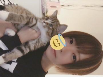 「22時~出勤するよ!」01/14(火) 20:00 | まいの写メ・風俗動画