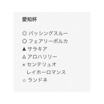 「愛知杯」01/18(土) 02:53 | さやかの写メ・風俗動画