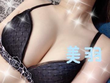 「出勤してます?」02/21(金) 20:42 | 【S】美羽/みうの写メ・風俗動画