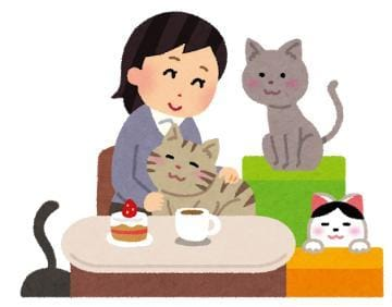 「猫の日!!」02/22(土) 02:50   パインの写メ・風俗動画