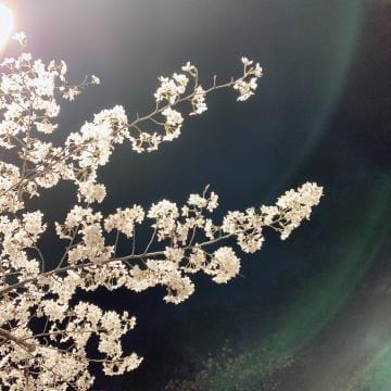 「出勤するよん?」03/26(木) 16:34 | ここみの写メ・風俗動画