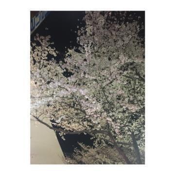 「おはようございます」03/30(月) 07:52 | みさの写メ・風俗動画