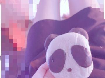 「こんにちはっ」03/31(火) 13:19 | みゆの写メ・風俗動画