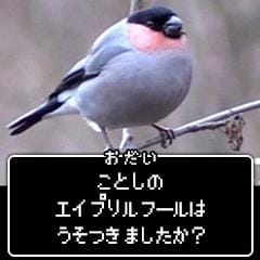 幸咲 あんじゅ「【お題:嘘】」04/04(土) 21:00 | 幸咲 あんじゅの写メ・風俗動画