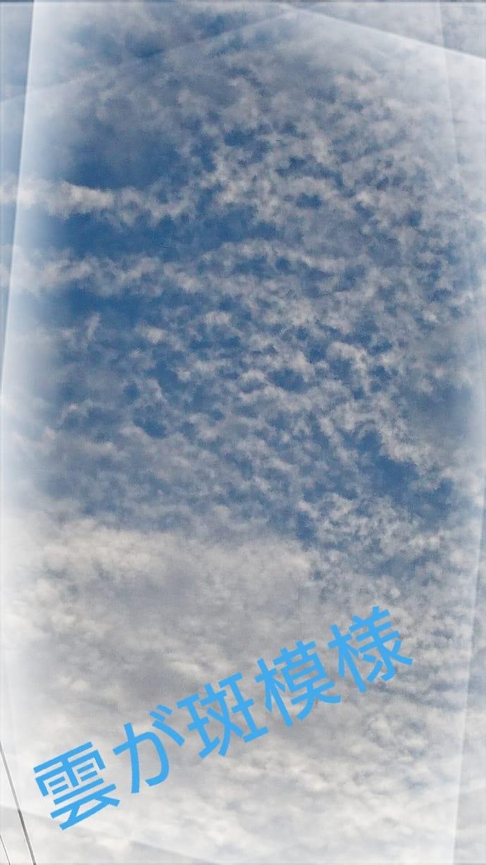 浅水麻弥「☆夕方〜」09/06(水) 17:46   浅水麻弥の写メ・風俗動画