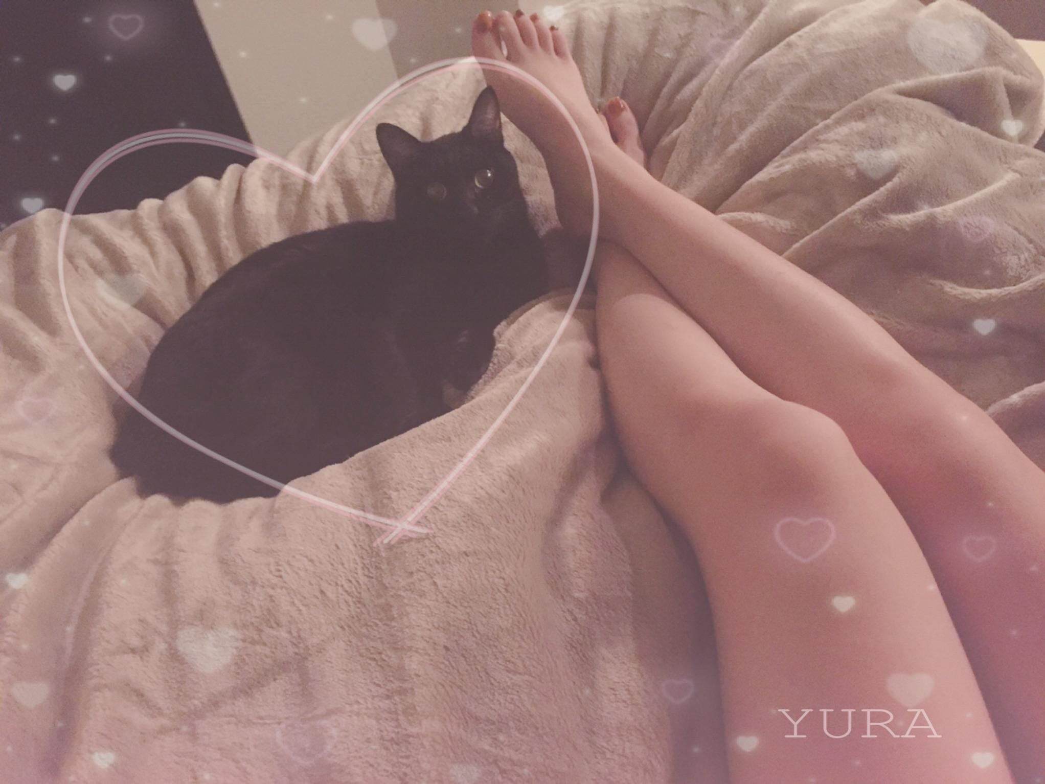 「本日お休みになります」05/27(水) 03:07 | ゆらの写メ・風俗動画