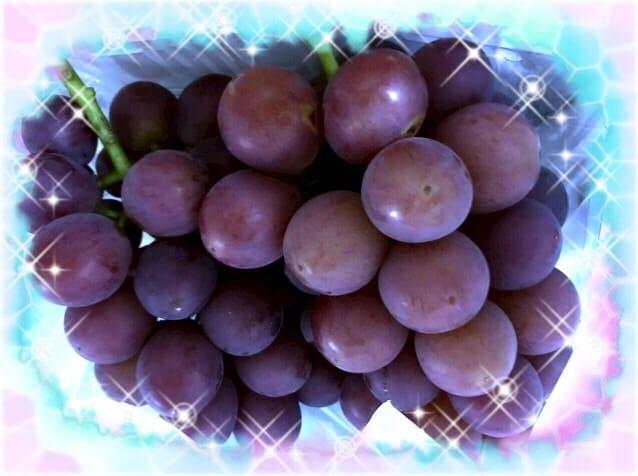 「葡萄♪」09/14(木) 14:13   水樹 由華の写メ・風俗動画