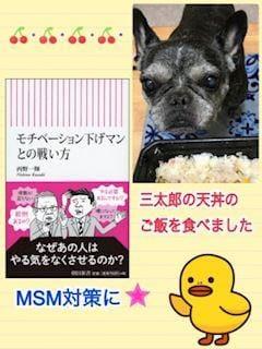 「MSM」05/28日(木) 10:26   よしえの写メ・風俗動画