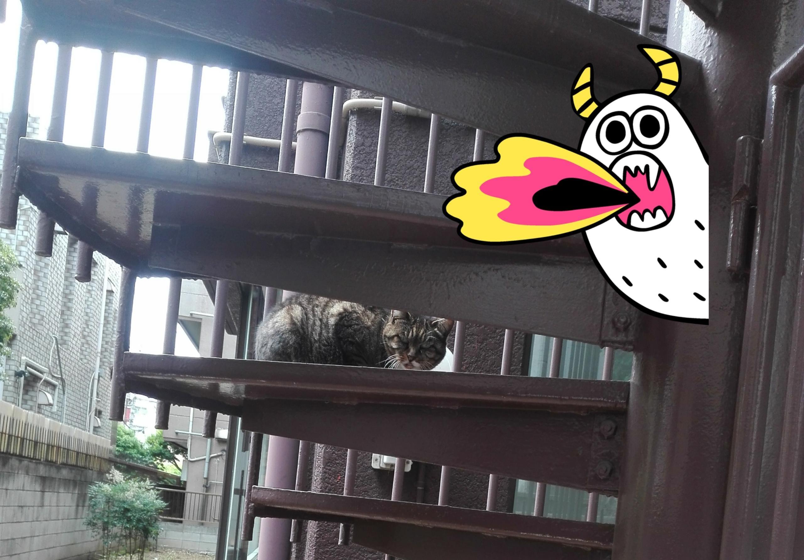 「パピコ」05/31日(日) 16:29 | あすかの写メ・風俗動画