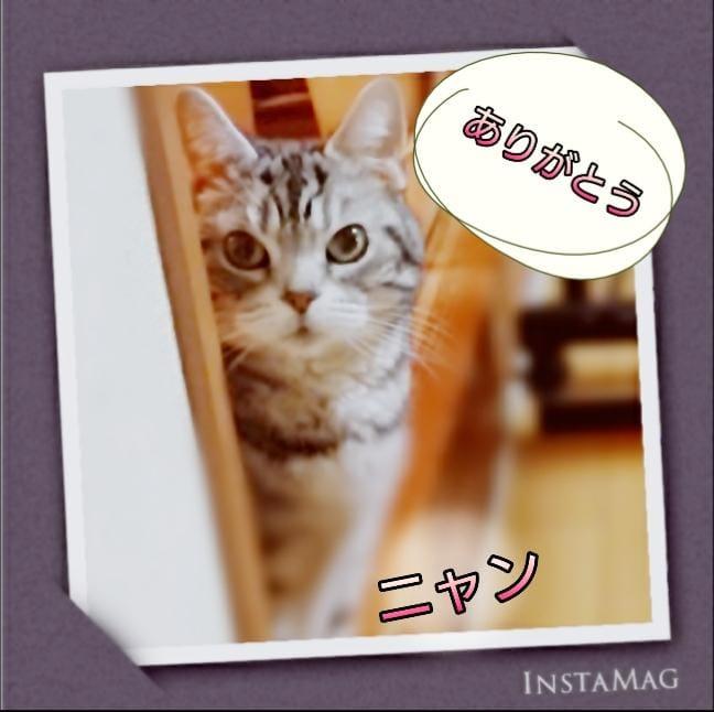 「ありがとう(*^^*)」05/31(日) 23:42 | あきなの写メ・風俗動画