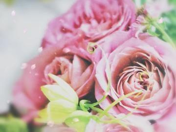 「お礼です?」06/06(土) 01:15 | 素乃子(そのこ)51才の写メ・風俗動画