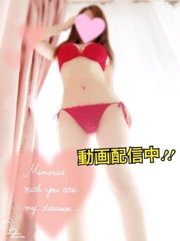 「美味しかった(*^ω^*)」09/18(月) 18:15   るか★新生アイドル美少女♪の写メ・風俗動画
