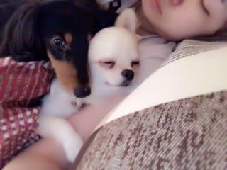 まりん☆国民的美少女☆「おやすみなさい?」09/19(火) 05:48   まりん☆国民的美少女☆の写メ・風俗動画