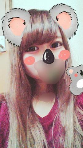 みう「koala bear」09/21(木) 20:09   みうの写メ・風俗動画