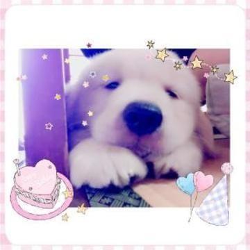 ジュン「おはによん!!!!!(; ・`д・´)」09/25(月) 14:25 | ジュンの写メ・風俗動画