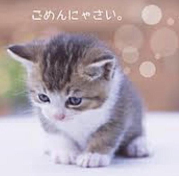 「画像のとおり...」07/04(土) 12:03 | ゆうみの写メ・風俗動画