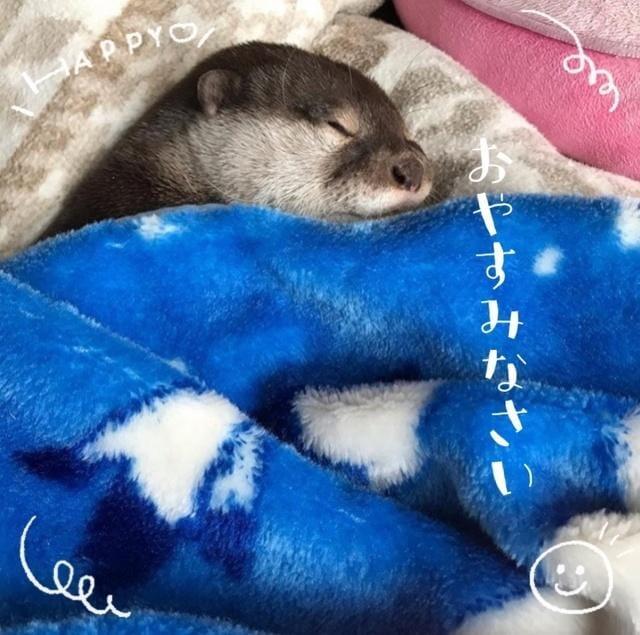 「ありがとうございました♡(´˘`*)」07/08(水) 07:54 | 松井 亜里沙の写メ・風俗動画
