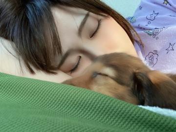 「おやすみ」07/13(月) 01:03 | ひなの 未経験美少女♡の写メ・風俗動画