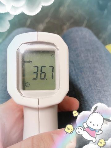 [今日の私の体温(コロナ対策やってます)]:フォトギャラリー 07-13 06:51 | 猫山みぃ【業界未経験】の写メ・風俗動画