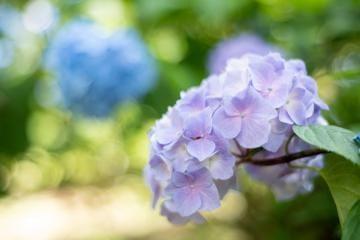 「○お礼○」07/14(火) 03:18 | つばさの写メ・風俗動画